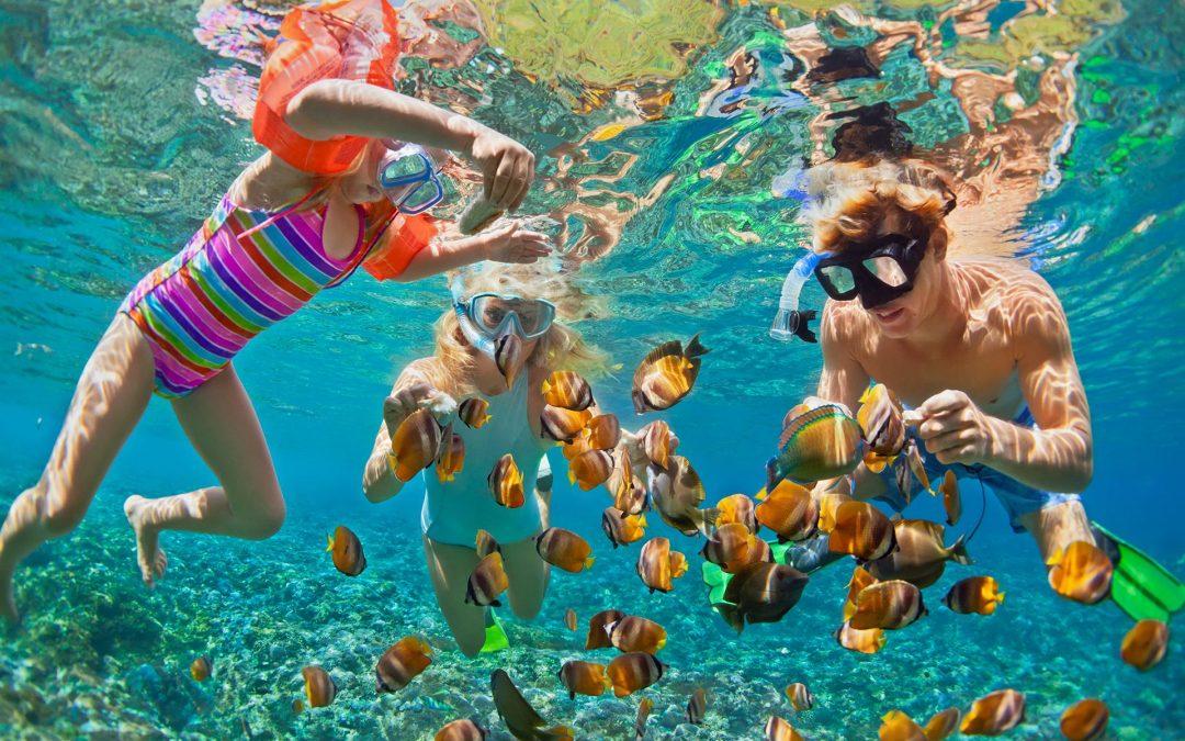 Summer Vacation 2021
